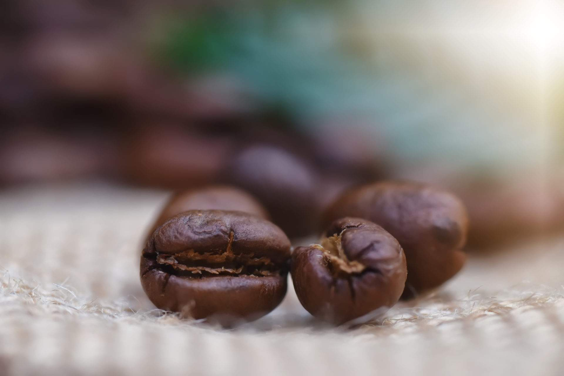 Peaberry Balistar